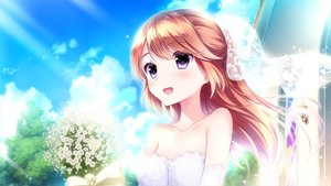 Rating: Safe Score: 28 Tags: brown_hair clouds ensemble_(company) flowers game_cg koi_wa_sotto_saku_hana_no_you_ni kurumi_sanae long_hair purple_eyes tagme_(artist) wedding_attire User: FormX