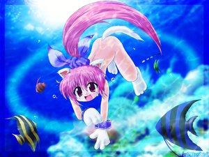 Rating: Safe Score: 12 Tags: animal animal_ears catgirl fish nude underwater water User: Oyashiro-sama