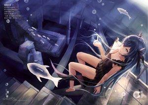 Rating: Safe Score: 121 Tags: animal aqua_eyes barefoot black_hair bubbles deep-sea_girl_(vocaloid) dress fish hatsune_miku hc long_hair music stairs summer_dress twintails underwater vocaloid water User: luckyluna