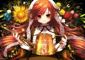Rating: Safe Score: 36 Tags: bicolored_eyes brown_hair flowers headdress lolita_fashion long_hair nagata_shuu rose rozen_maiden suiseiseki sunflower User: otaku_emmy