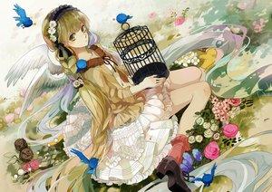 Rating: Safe Score: 86 Tags: animal bird braids cage dress flowers green_eyes green_hair hatsune_miku headdress long_hair michi_(iawei) socks vocaloid wings User: Flandre93