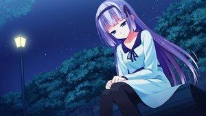 Rating: Safe Score: 55 Tags: blue_eyes dress game_cg ichiban_janakya_dame_desu_ka? kinta_(distortion) long_hair mitsuki_ruri night pantyhose purple_hair rosebleu stars User: Maboroshi