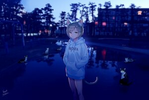 Rating: Safe Score: 48 Tags: animal animal_ears brown_hair building cat catgirl foo_midori green_eyes hoodie night original park reflection short_hair signed tail tree water User: otaku_emmy