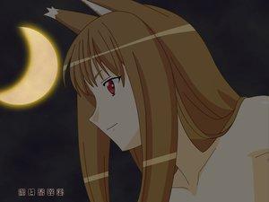 Rating: Safe Score: 23 Tags: animal_ears dark horo long_hair moon ookami_to_koushinryou orange_hair red_eyes vector wolfgirl User: Oyashiro-sama