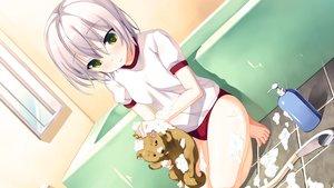 Rating: Safe Score: 97 Tags: animal bath dog game_cg green_eyes gym_uniform ichiban_janakya_dame_desu_ka? nanase_meruchi purple_hair rosebleu shijou_sango short_hair User: Maboroshi