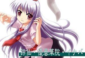 Rating: Safe Score: 27 Tags: animal_ears bunny_ears bunnygirl kinagi_yuu long_hair pink_eyes purple_hair reisen_udongein_inaba tie touhou white User: opai