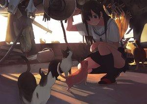 Rating: Safe Score: 104 Tags: animal black_eyes black_hair cat chain hat kneehighs long_hair morifumi original seifuku skirt tie User: RyuZU