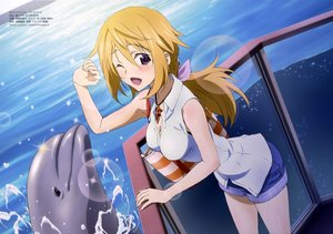 Rating: Safe Score: 5 Tags: animal blonde_hair charlotte_dunois dolphin infinite_stratos nyantype purple_eyes scan water User: Stealthbird97