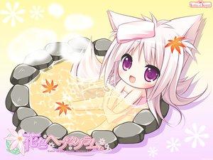 Rating: Safe Score: 123 Tags: animal_ears chibi foxgirl hanairo_heptagram long_hair lump_of_sugar miyuri moekibara_fumitake onsen tail User: Wiresetc