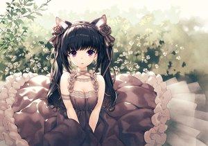 Rating: Safe Score: 83 Tags: animal_ears black_hair breasts catgirl cleavage dress flowers hirano_katsuyuki lolita_fashion long_hair original purple_eyes User: mattiasc02