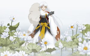 Rating: Safe Score: 52 Tags: inuyasha japanese_clothes long_hair sesshomaru sword tagme weapon white_hair User: gnarf1975