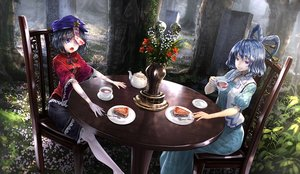 Rating: Safe Score: 149 Tags: 2girls black_hair blue_eyes blue_hair cake drink flowers food kaku_seiga miyako_yoshika purple_eyes ryosios short_hair touhou tree User: luckyluna