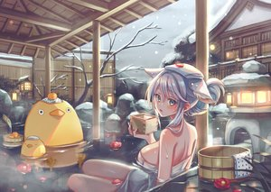 Rating: Safe Score: 57 Tags: animal_ears building flowers food fruit gray_hair onsen orange_(fruit) original snow tree water winter zoff_(daria) User: BattlequeenYume