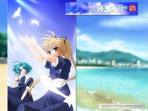 Rating: Safe Score: 6 Tags: aqua_hair blonde_hair blue_eyes brown_eyes fujimiya_nozomi fujimiya_wakaba glasses school_uniform wind:_a_breath_of_heart User: Oyashiro-sama