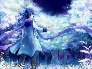 Rating: Safe Score: 25 Tags: all_male kaito male vocaloid User: HawthorneKitty