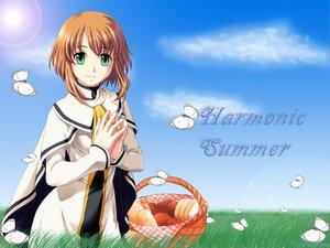 Rating: Safe Score: 14 Tags: butterfly clouds food grass green_eyes orange_hair sky User: Oyashiro-sama