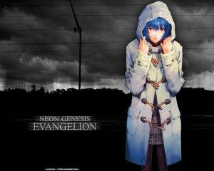 Rating: Safe Score: 3 Tags: ayanami_rei blue_hair neon_genesis_evangelion pantyhose red_eyes skirt User: Oyashiro-sama