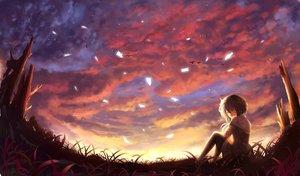 Rating: Safe Score: 128 Tags: animal bird clouds grass nio_(jacky19921205) original scenic short_hair sky sunset User: FormX