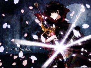 Rating: Safe Score: 8 Tags: all_male black_hair clamp male petals shirou_kamui sword weapon x User: Oyashiro-sama
