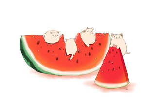 Rating: Safe Score: 30 Tags: animal cat chai_(artist) food fruit original signed watermelon white User: otaku_emmy