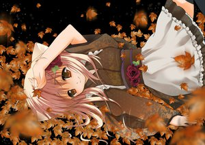 Rating: Safe Score: 37 Tags: animal_ears autumn brown_eyes catgirl flowers japanese_clothes long_hair original pink_hair rose thighhighs User: Tensa