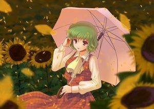 Rating: Safe Score: 27 Tags: alha brown_eyes flowers green_hair kazami_yuuka petals short_hair sunflower touhou umbrella User: Tensa