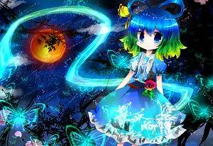 Rating: Safe Score: 44 Tags: blue_eyes blue_hair butterfly dress flowers green_hair kaku_seiga mirukuebi moon night rose touhou User: SonicBlue