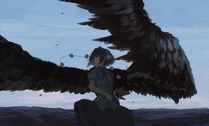 Rating: Safe Score: 61 Tags: black_hair brown_eyes clouds dress mifuru petals ribbons shameimaru_aya short_hair sky touhou wings User: RyuZU
