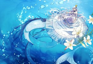 Rating: Safe Score: 47 Tags: aiha-deko aqua_eyes blood crown dress flowers long_hair mermaid original tail underwater water white_hair User: RyuZU