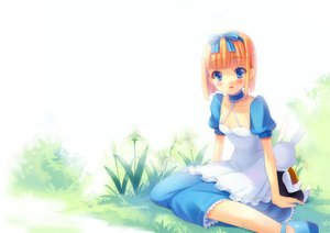 Rating: Safe Score: 29 Tags: alice_(wonderland) alice_in_wonderland blue_eyes bow bunny dress User: HawthorneKitty