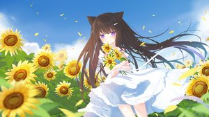 Rating: Safe Score: 60 Tags: animal_ears blush brown_hair catgirl choker clouds dress flowers fufumi long_hair original petals purple_eyes ribbons sky summer summer_dress sunflower User: otaku_emmy