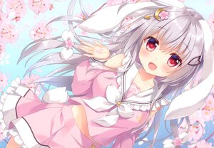 Rating: Safe Score: 69 Tags: ameto_yuki animal_ears bunny_ears bunnygirl cherry_blossoms flowers gray_hair long_hair original red_eyes scan tail User: Nepcoheart