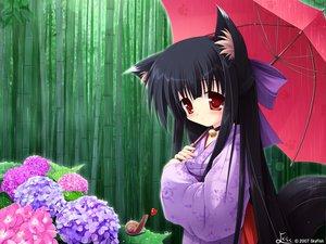 Rating: Safe Score: 29 Tags: animal_ears bell choker flowers foxgirl japanese_clothes kimono long_hair rain red_eyes skyfish tail tsubasa_tamago umbrella water User: korokun