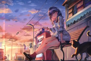 Rating: Safe Score: 68 Tags: animal black_hair blue_eyes building cat city clouds drink headphones ice_(6597201) long_hair seifuku skirt sky socks ssss.gridman stars sunset takarada_rikka wristwear User: otaku_emmy