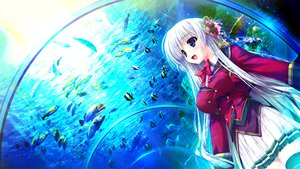 Rating: Safe Score: 170 Tags: aina_ashwin animal clochette fish game_cg long_hair prism_recollection school_uniform shintaro thighhighs water white_hair User: Wiresetc