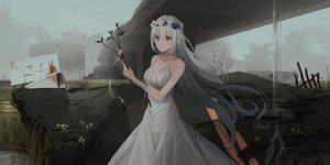 Rating: Safe Score: 87 Tags: ai_(chihuri) blood braids breasts chihuri405 choker cleavage clouds dark dress flowers grass gray_eyes gray_hair headdress original ruins sky summer_dress water waterfall User: ssagwp