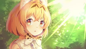 Rating: Safe Score: 51 Tags: animal_ears animal_ears_(artist) anthropomorphism blonde_hair blush bow catgirl close kemono_friends serval short_hair yellow_eyes User: あかり