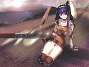 Rating: Safe Score: 21 Tags: animal_ears armor bunny_ears bunnygirl knight_(ragnarok_online) ragnarok_online taka_tony User: Oyashiro-sama