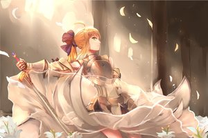 Rating: Safe Score: 84 Tags: 1761975416 armor artoria_pendragon_(all) blonde_hair dress fate_(series) fate/stay_night fate/unlimited_codes flowers green_eyes petals ponytail saber saber_lily sword weapon User: Flandre93