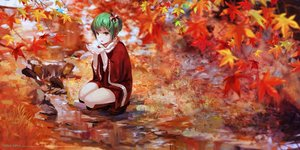 Rating: Safe Score: 113 Tags: autumn boots dress green_hair jq kagiyama_hina scarf short_hair touhou water yellow_eyes User: RyuZU