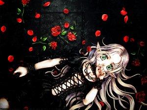 Rating: Safe Score: 9 Tags: flowers gray_hair green_eyes long_hair mizusawa_hikaru petals pointed_ears rose User: mihaela94