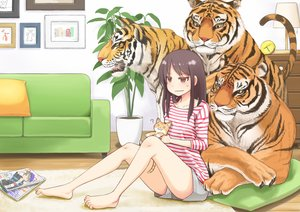 Rating: Safe Score: 109 Tags: animal barefoot book brown_eyes brown_hair hotatey long_hair original shorts tiger User: Flandre93