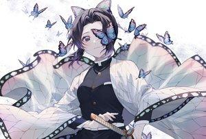 Rating: Safe Score: 70 Tags: butterfly kimetsu_no_yaiba kochou_shinobu sensiye User: FormX