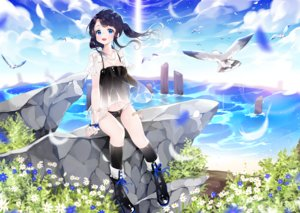 Rating: Safe Score: 125 Tags: animal bird black_hair blue_eyes boots breasts cleavage clouds dress flowers kneehighs li.b_(liebenib) necklace original sky twintails water User: FormX