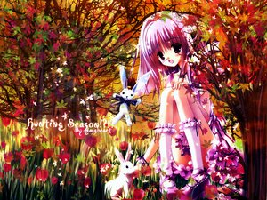 Rating: Safe Score: 29 Tags: animal autumn brown_eyes bunny flowers kneehighs purple_hair rabbit short_hair tree User: Oyashiro-sama