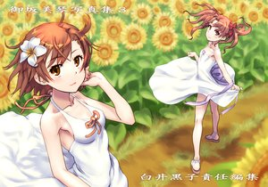 Rating: Safe Score: 73 Tags: 2girls dress flowers misaka_mikoto raika9 shirai_kuroko summer_dress sunflower to_aru_kagaku_no_railgun to_aru_majutsu_no_index User: FormX