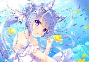 Rating: Safe Score: 68 Tags: ameto_yuki animal animal_ears aqua_hair catgirl dress fish long_hair original purple_eyes scan underwater water User: Nepcoheart