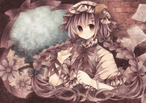 Rating: Safe Score: 72 Tags: bow braids flowers hat long_hair patchouli_knowledge purple_eyes purple_hair ribbons touhou wiriam07 User: PAIIS