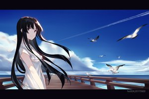 Rating: Safe Score: 74 Tags: akiyama_mio animal bird black_eyes black_hair clouds dress k-on! long_hair sky summer_dress water zjm530280188 User: RyuZU