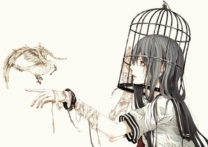 Rating: Safe Score: 58 Tags: animal bandage bird bouno_satoshi cage chain original polychromatic school_uniform shackles white User: kyxor